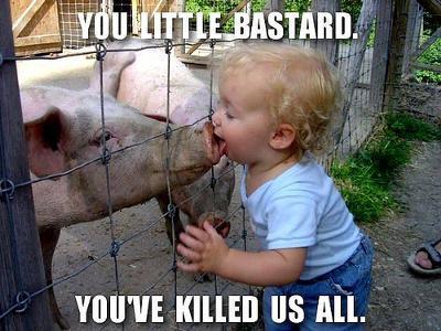 swine-flu-21346041